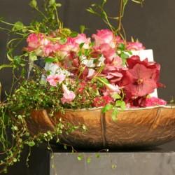 اكزوتيكا للزهور-زهور الزفاف-دبي-1