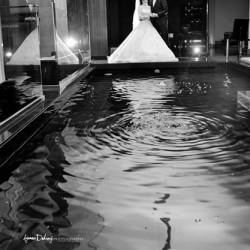 ايمن دكروري-التصوير الفوتوغرافي والفيديو-الاسكندرية-2