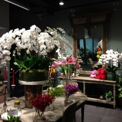 ماي فلاور-زهور الزفاف-دبي-4