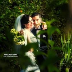 محمد الفار-التصوير الفوتوغرافي والفيديو-القاهرة-2