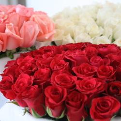 سويت فلاور-زهور الزفاف-مدينة تونس-5