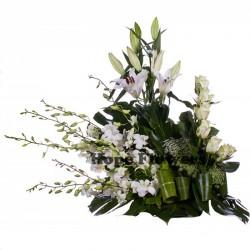 هوب فلاورز-زهور الزفاف-القاهرة-4