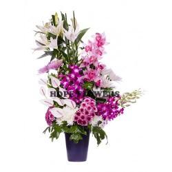 هوب فلاورز-زهور الزفاف-القاهرة-6