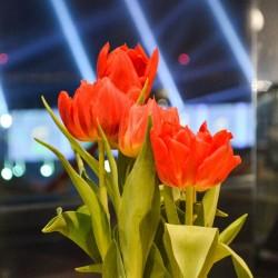كونتيمبو-زهور الزفاف-دبي-3