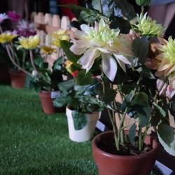 دبي جاردن سنتر-زهور الزفاف-دبي-3