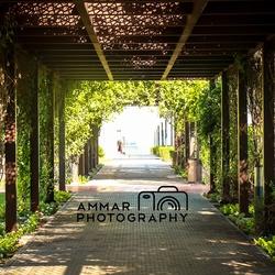 المصور عمار نبيل-التصوير الفوتوغرافي والفيديو-دبي-5