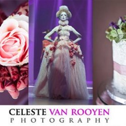 سيليست فان روين-التصوير الفوتوغرافي والفيديو-دبي-3