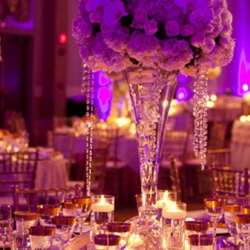 Avolite Events Management-Wedding Planning-Abu Dhabi-1
