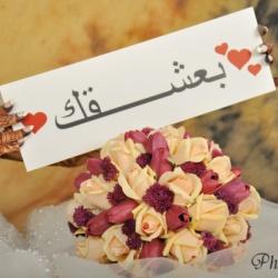 المصورة شيماء الحسيني-التصوير الفوتوغرافي والفيديو-مسقط-2