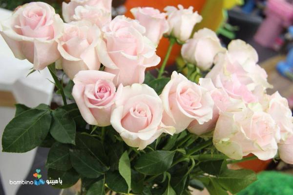بامبينو فلاورز - زهور الزفاف - دبي