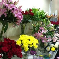 بامبينو فلاورز-زهور الزفاف-دبي-2