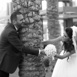 أمجد حمدان للتصوير الفوتوغرافي-التصوير الفوتوغرافي والفيديو-أبوظبي-4