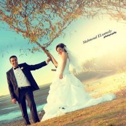 محمود السمولي-التصوير الفوتوغرافي والفيديو-القاهرة-3