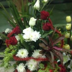 اوركيد فلورز-زهور الزفاف-القاهرة-4