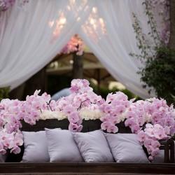 ميزون دي فلور-زهور الزفاف-دبي-2