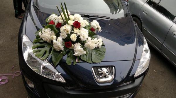 موليس فلورز - زهور الزفاف - القاهرة