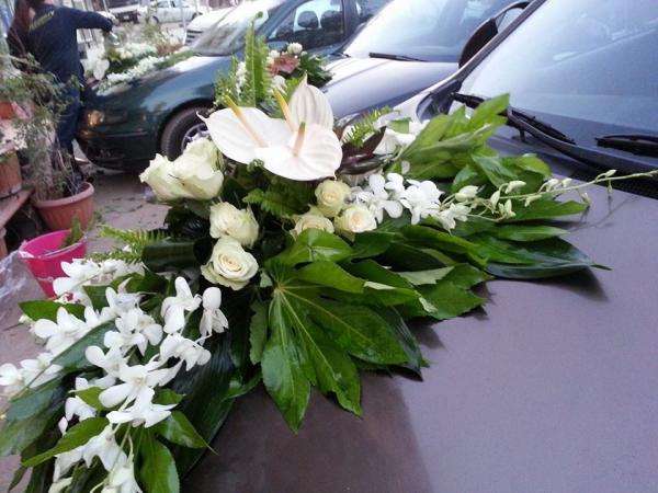بيتالز اند ليفز - زهور الزفاف - القاهرة