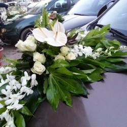 بيتالز اند ليفز-زهور الزفاف-القاهرة-1
