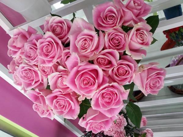 فيوريستا فلاورز - زهور الزفاف - دبي