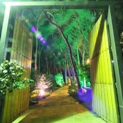قصر الصنوبر-المطاعم-بيروت-5