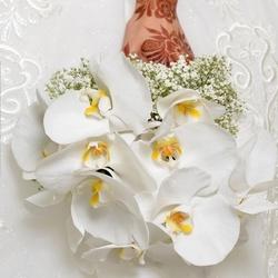 مملكة الزهور-زهور الزفاف-مسقط-1