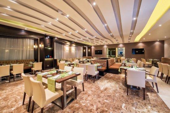 فندق غولدن توليب الدوحة - الفنادق - الدوحة