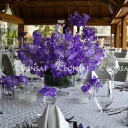 بونساي-زهور الزفاف-بيروت-6