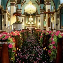 ازهار توليب-زهور الزفاف-بيروت-3