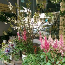 انفلورسينس-زهور الزفاف-بيروت-4