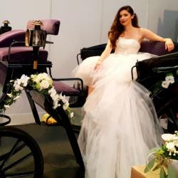 Stephanie Conrads-Hochzeitsautos-Köln-5