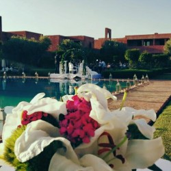 مايف-كوش وتنسيق حفلات-مراكش-5