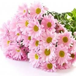 فرينز فلورا-زهور الزفاف-دبي-6