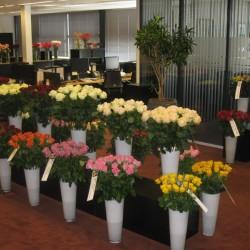 فرينز فلورا-زهور الزفاف-دبي-5