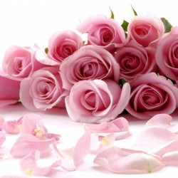 لوتس-زهور الزفاف-الدوحة-1