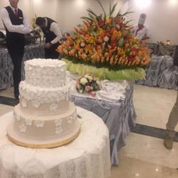 فندق مونت كايرو-الفنادق-القاهرة-3