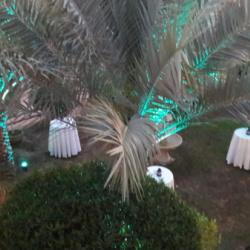 فندق بارجيل هيرتيج جيست هاوس-الفنادق-دبي-4