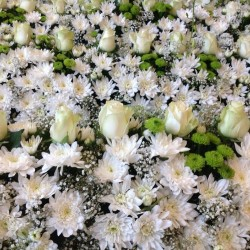 تشويس فلاورز-زهور الزفاف-أبوظبي-6