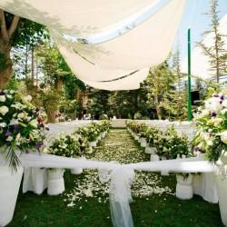 ايكزوتيكا-زهور الزفاف-بيروت-6