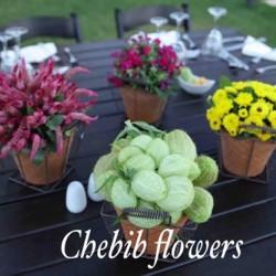 شبيب فلاورز-زهور الزفاف-بيروت-5