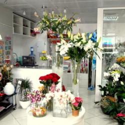 بينك اند جريين فلاورز-زهور الزفاف-أبوظبي-1