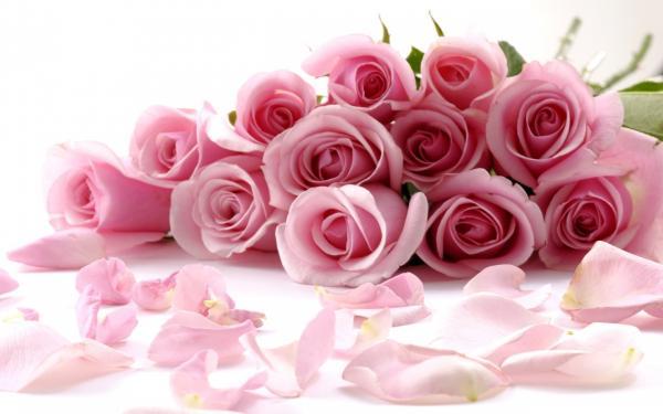 ريل فلاورز - زهور الزفاف - دبي