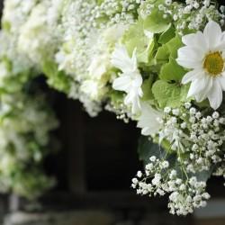 غولف بيرل فلاورز-زهور الزفاف-المنامة-1