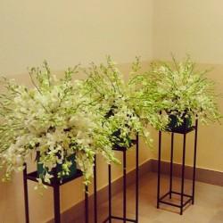 فلاورز افنيو-زهور الزفاف-مسقط-3