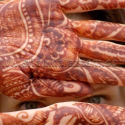 شوقي العزام-التصوير الفوتوغرافي والفيديو-الدوحة-3