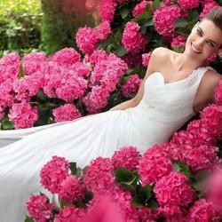 فايدة-فستان الزفاف-مدينة تونس-1