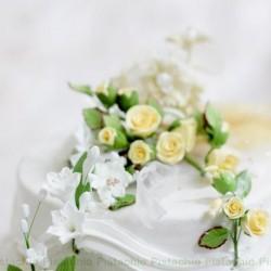 الفستق-كيك الزفاف-صفاقس-3