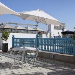 الببغاء الأزرق أجنحة سبا-الفنادق-مراكش-3