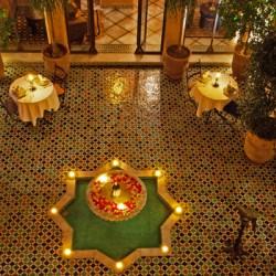 الببغاء الأزرق أجنحة سبا-الفنادق-مراكش-2