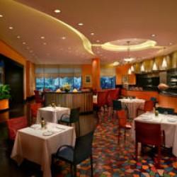 فندق جراند حياة دبي-الفنادق-دبي-3