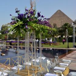 فندق مينا هاوس-الفنادق-القاهرة-4